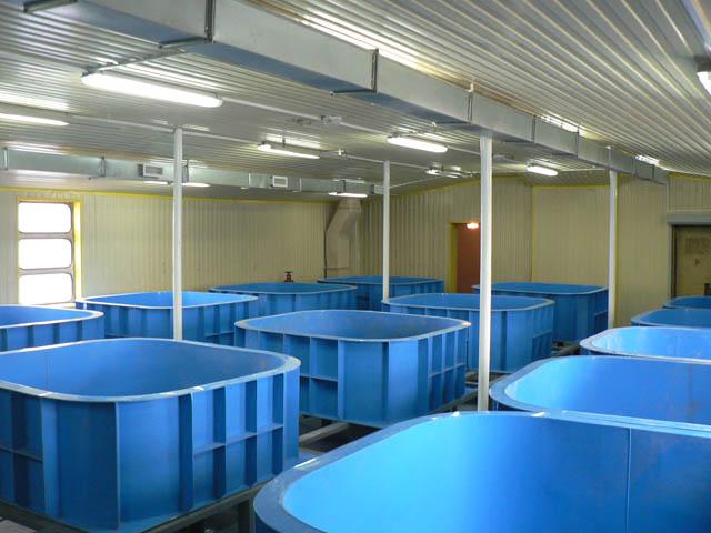 Резервуары для разведения рыбы 1
